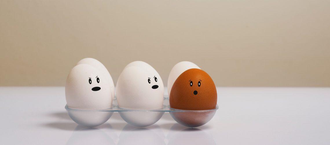 chicken-eggs-color-concept-1556707 EDIT